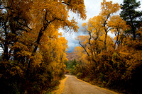 Missionary Ridge Road in Fall